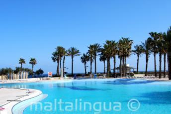 Hilton Malta Swimmingpool mit Meerblick