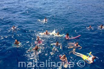 Eine große Gruppe an Englischsprachschülern schwimmt zusammen